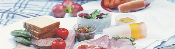 EFEMA - EFEMA Index of Food Emulsifiers